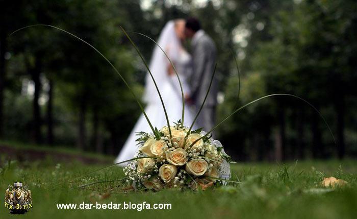 http://milad-web.persiangig.com/image/asheghane/love/1234950388v6qiva.jpg
